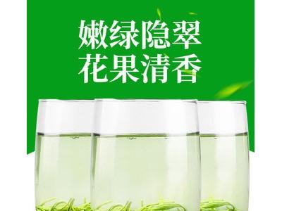 2019新茶 碧螺春绿茶